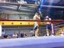 MMA a Maggio 2014